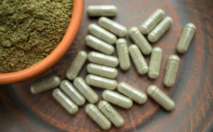 Put Collectively To Giggle: Kratom Extract Isn't Harmless Since You Would Possibly Believe