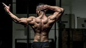 The 5 Best SARMS for Weight Reduction To Make Use Of In 2020