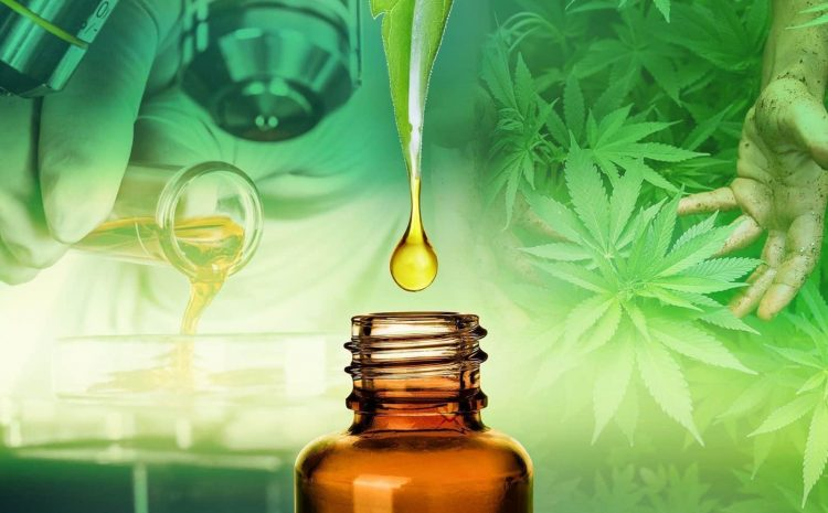 Nine Tips To Begin Building A Cbd Oil You Always Wanted